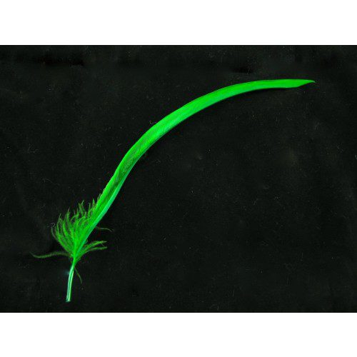 green-goose-biot-feathers